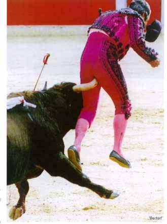 Quando il toro s' incazza ti può incornare