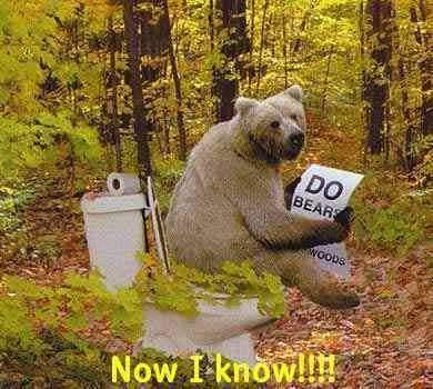 Non disturbare l'orso