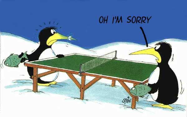 Ping pong tra pinguini