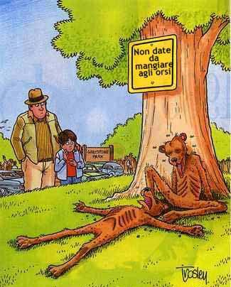 Controindicazioni . Poveri orsi