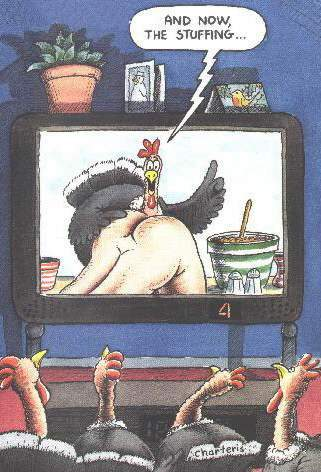 Corso di cucina per galline