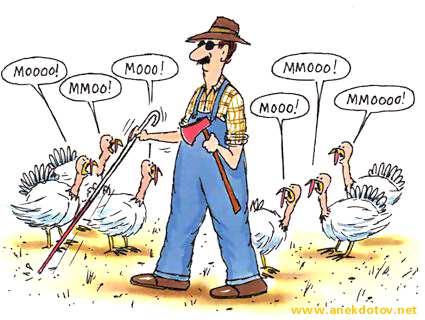 Acchiappa la gallina