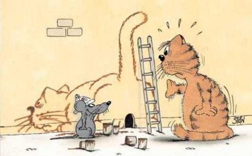 Un topo imbianchino
