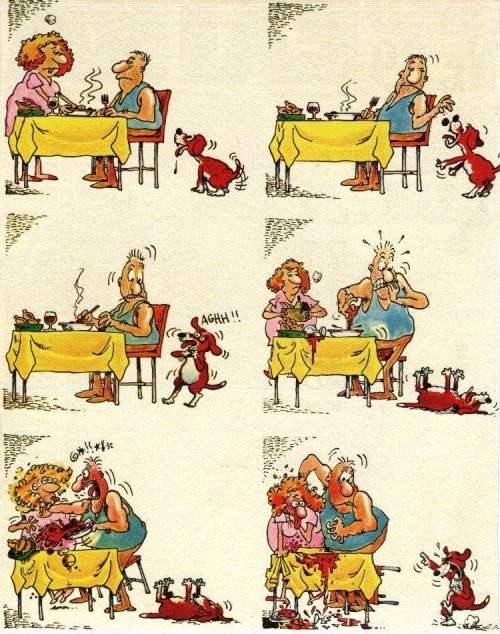 Polpetta avvelenata… Uno scherzo da cani